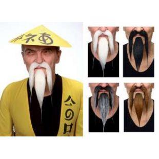 Moustache chinoise longue