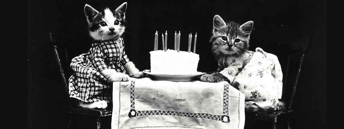 Vente de bougie d'anniversaire