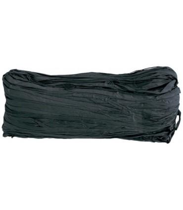 Raphia noir