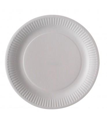 Assiette biodegradable carton