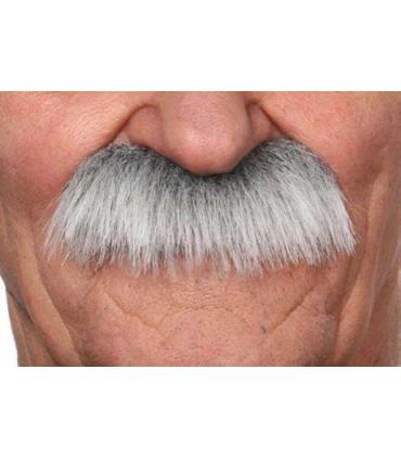 Moustache brosse