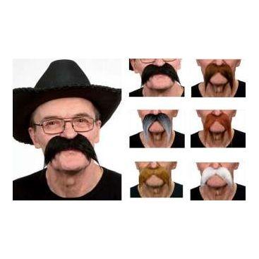 Moustache gauloise