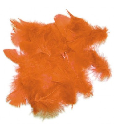 Plume décorative, sachet de 20 grammes
